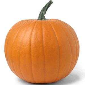 pumpkin timebomb prediction activity builder by desmos